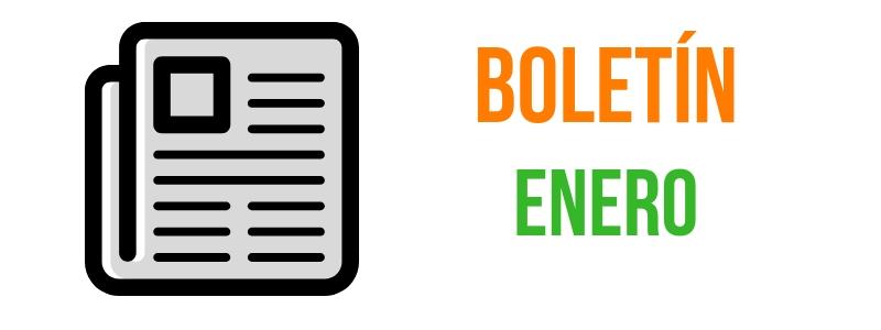 BOLETÍN ENERO 2019