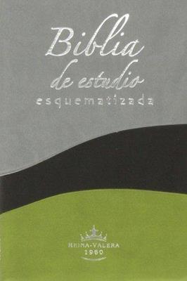 Biblia de estudio esquematizada (Piel) [Biblia]