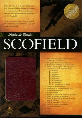 Biblia de estudio Scofield (PIEL) [Biblia]