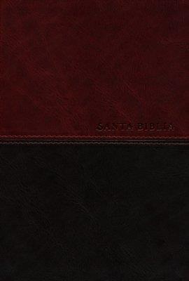 Biblia edicion personal letra grande (Piel)
