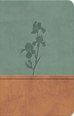 Biblia tipo agenda edición especial - Pardo - Menta (Piel) [Biblia]