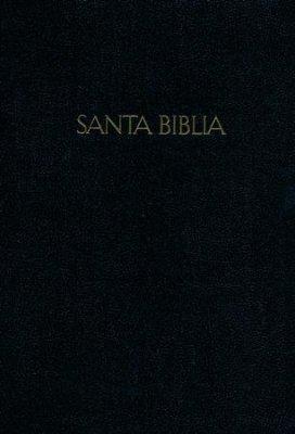 Biblia Bilingue RVR60-KJV Letra Grande con Índice (imitación piel) [Bíblia]