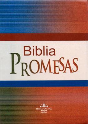 Biblia Promesas Vinilo Canto Plateado