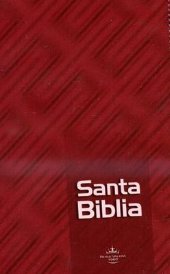 Santa Biblia (Acolchada) [Biblia]