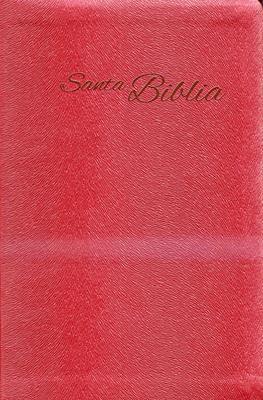 Santa Biblia (Piel) [Biblia]