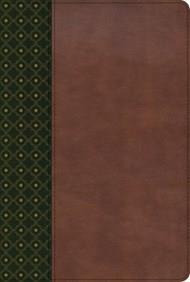 Biblia De Estudio Scofield - Verde Oscuro/Castaño Con Indice (Simil Piel) [Biblia]