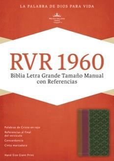Biblia- Letra Grande -Chocolate Ciruela Y Verde (Imitación Piel) [Biblia]