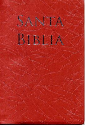 Biblia Letra Grande Manual Rosada (Imitación Piel (Vinilo)) [Biblia]