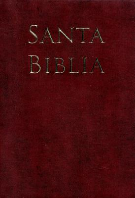 Biblia Letra Grande Vinilo Café (Vinilo Cafe) [Biblia]