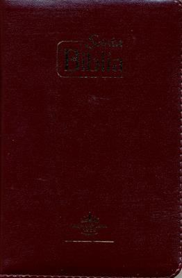Biblia Misionera Vino (Imitación Piel) [Biblia]