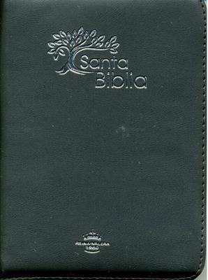 Biblia RVR60 Tamaño 042CZLG Olivo (Imitación Piel (Vinilo)) [Biblia]