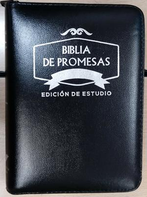 Biblia Tamaño 045 Promesas Negra (Imitación Piel) [Biblia]