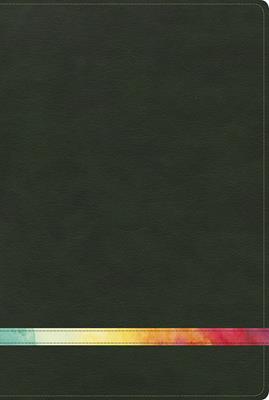Biblia De Estudio Arco Iris RVR60 Verde Oscuro Símil Piel (Flexible Imitación Piel Verde) [Biblia de Estudio]