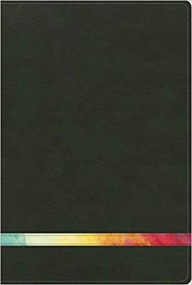 Biblia De Estudio Arco Iris Verde Oscuro Símil Piel (Imitación Piel) [Biblia]