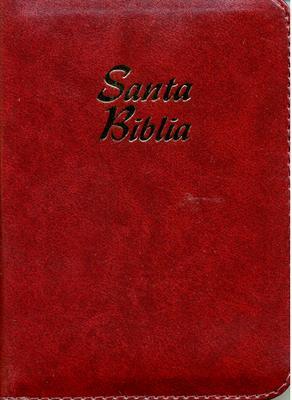 Biblia Tamaño025CIZ Concordancia Indice Vinotinto (imitación piel(percalina)) [Biblia]