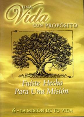 Principiantes Maestro 7/8