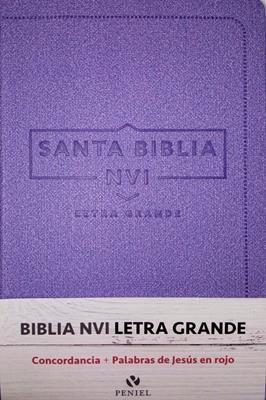 Biblia Tamaño 060 Letra Grande Cuero Italiano (Imitación Piel) [Biblia]