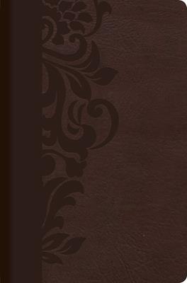 Biblia De Estudio Para Mujer - Chocolate (Simil Piel - en caja) [Bíblia]