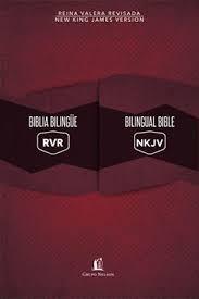 Biblia Bilingüe/ Bilingual Bible (Rustica) [Biblia]