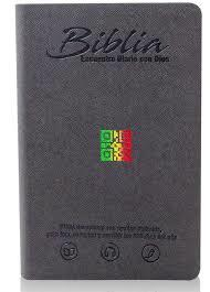 Biblia Tamaño 065 Encuentro Con Dios Gris (Imitación Piel) [Biblia]