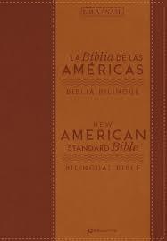 Biblia Bilingue (Imitación Piel) [Biblia]