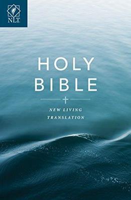 Biblia Rustica Ingles (Rústica) [Biblia]
