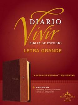 Biblia De Estudio Diario Vivir RVR60 Letra Grande Sentipiel Café Claro (Flexible Imitacion Piel Café) [Bíblia]