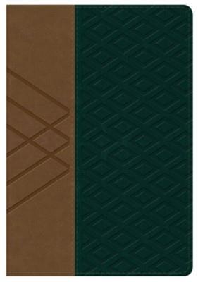 Biblia/RVR/Letra Grande/Manual/Referencias/Simil Piel/Habano/Verde Oscuro (Flexible Imitacion Piel dos tonos) [Bíblia]