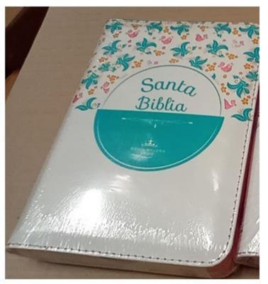 Biblia RVR 045 CZLG PJR Blanco Flores (Flexible Flores Colores con Cierre) [Biblia]