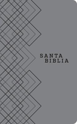 Biblia NTV/Edicion Agape/Sentipiel/Gris (Flexible Senti Piel Gris) [Bíblia]