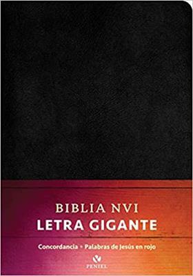 Biblia NVI/Letra Grande (imitacion piel) [Bíblia]