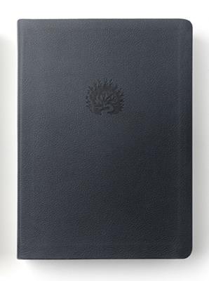 Biblia De Estudio De La Reforma (Simil Piel) [Biblia de Estudio]
