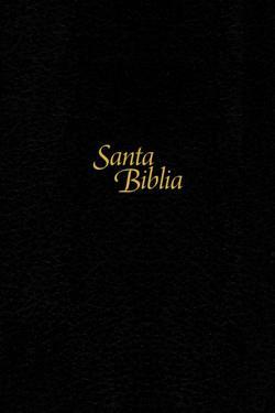 Biblia NTV/Edicion Personal/Letra Grande/Negro/Tapa Dura De Sentipiel (Tapa dura)