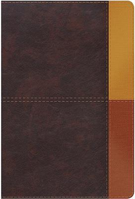 Biblia De Estudio/RVR60/Arcoiris/Cocoa-Terracota/Semil-Piel/Nueva (Imitación Piel) [Biblia de Estudio]