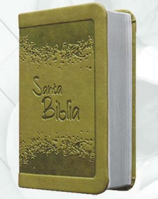 Biblia/RVR015/Verde/ Canto Plateado Sin Cierre