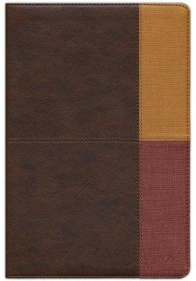 Biblia De Estudio/RVR60/Arcoiris/Cocoa-Terracota/Semil-Piel/Indice/Nueva (Imitación Piel)