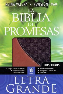 Biblia de promesas letra grande (Piel fabricada) [Biblia]