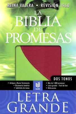 Biblia de las promesas letra grande rosa-vino/verde-limón (Piel fabricada) [Biblia]