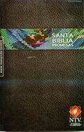 Biblia de promesas / NTV / Rústica