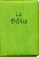 Biblia flexible verde oliva