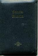 Biblia RVR60 Tamaño45