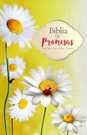 Biblia Promesas Economica Mujeres
