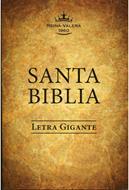 Biblia Tamaño 80 LGI Cafe