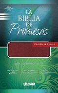 Biblia De Promesas Edición Regalo Imitación Piel Vino