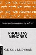 Comentario Al Texto Hebreo Del Antiguo Testamento/Profetas Menores