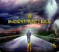 Indestructible [CD]