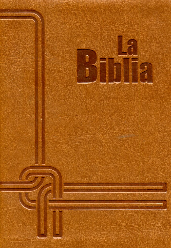 Biblia marron