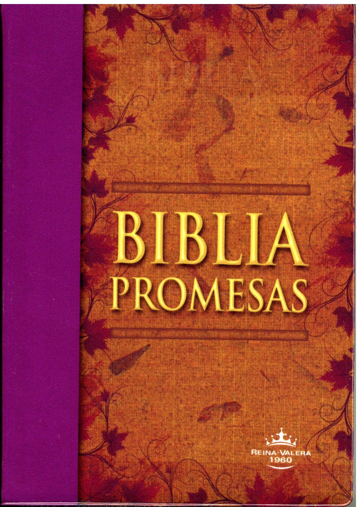 Biblia RVR60 Tamaño 042 Promesas