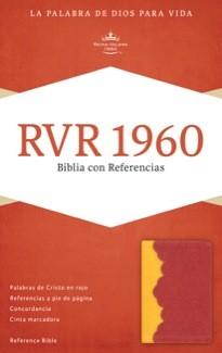 Biblia - Amarillo Rojo Ladrillo