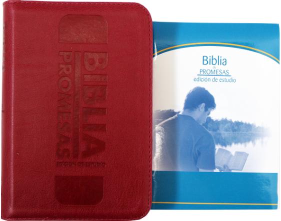 Biblia RVR60 Tamaño 045CZA Promesas